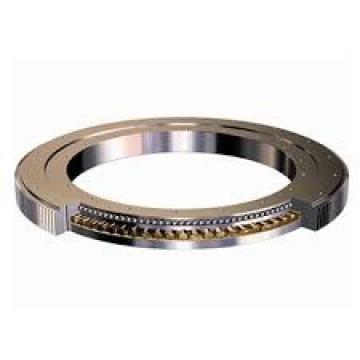 300DBS202y slewing bearing